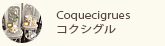 Coquecigrues-コクシグル